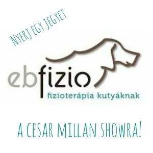 ebfizio_cesarmillan